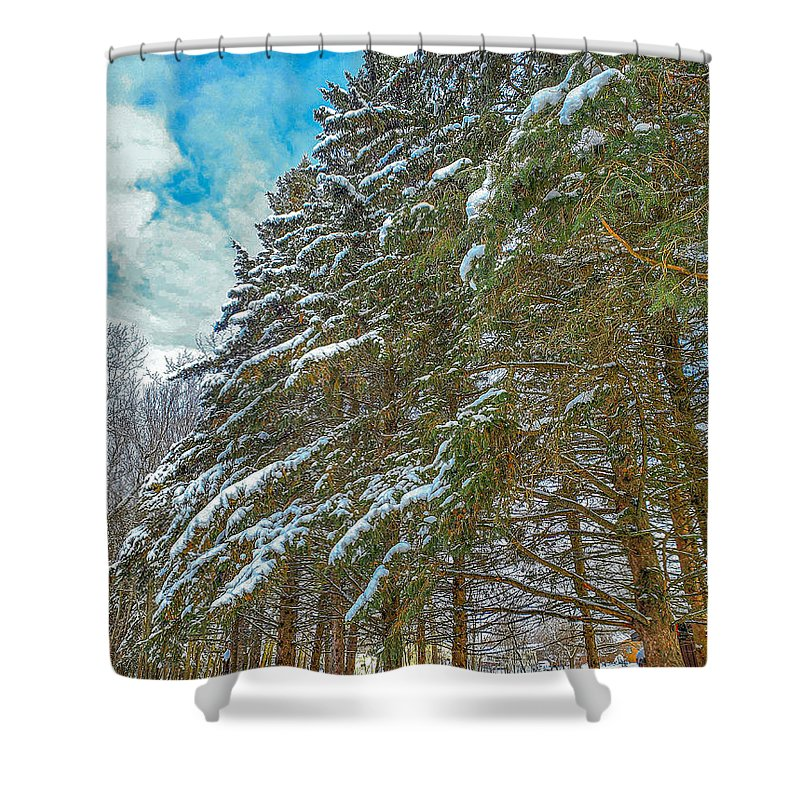 Nature Shower Curtain featuring the photograph Winter trees by M Forsell