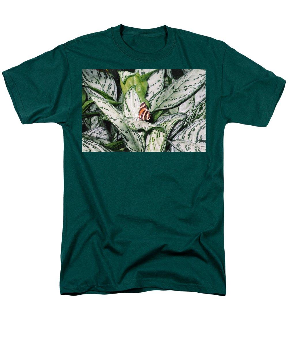 Butterfly Men's T-Shirt (Regular Fit) featuring the photograph Striped Butterfly by Pharris Art