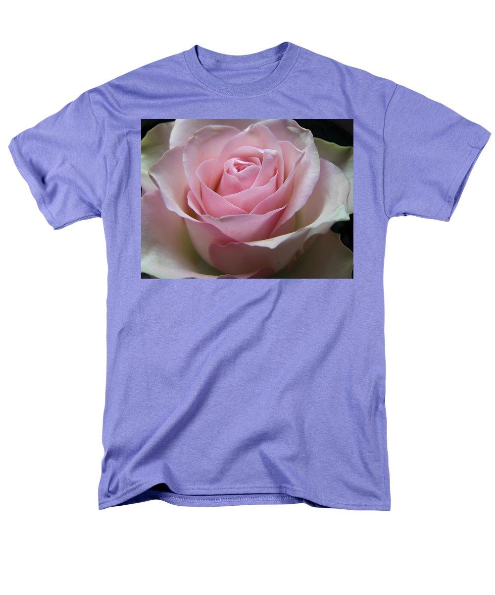 Rose Men's T-Shirt (Regular Fit) featuring the photograph Rose by Daniel Csoka