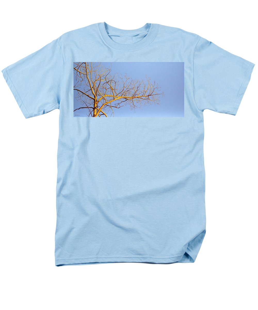 Aspen Painting Men's T-Shirt (Regular Fit) featuring the painting Aspen In The Autumn Sun by Elaine Booth-Kallweit