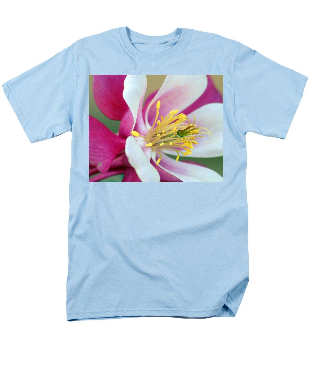 Columbine Men's T-Shirt (Regular Fit) featuring the photograph Columbine Flower 2 by Amy Fose