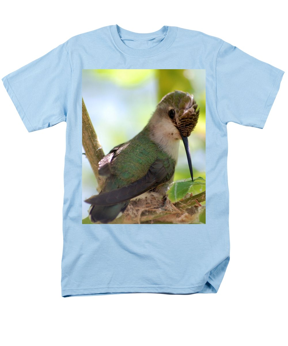 Hummingbird Men's T-Shirt (Regular Fit) featuring the photograph Hummingbird with small nest by Amy Fose