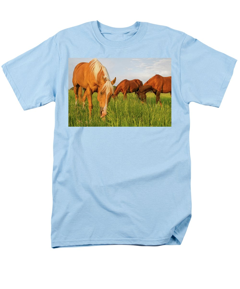 Quarter Horse Men's T-Shirt (Regular Fit) featuring the photograph In The Grass by Alana Thrower