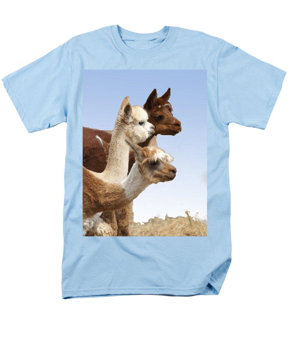Llama Men's T-Shirt (Regular Fit) featuring the photograph Llama's Three by Heather Coen