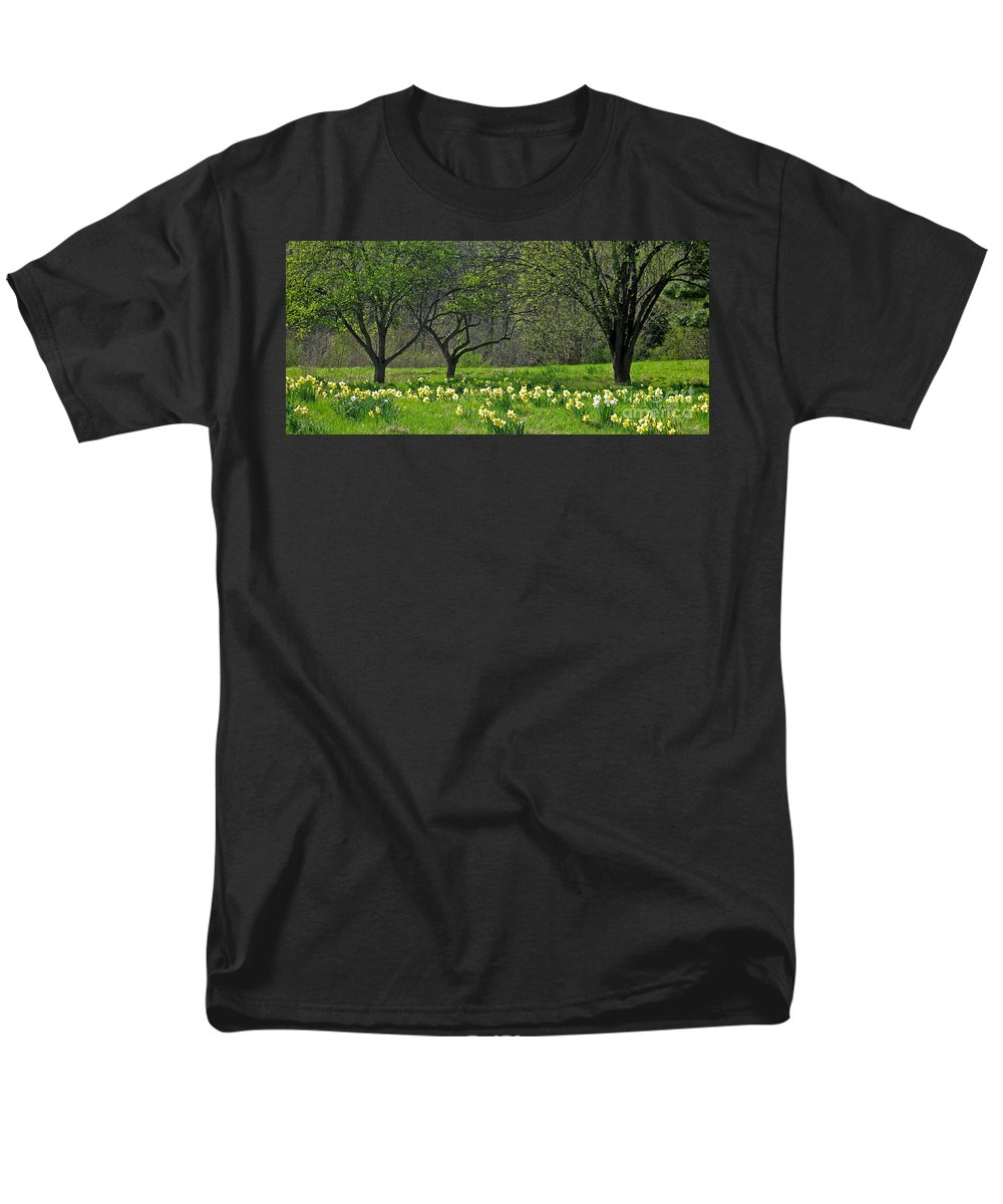 Spring Men's T-Shirt (Regular Fit) featuring the photograph Daffodil Meadow by Ann Horn