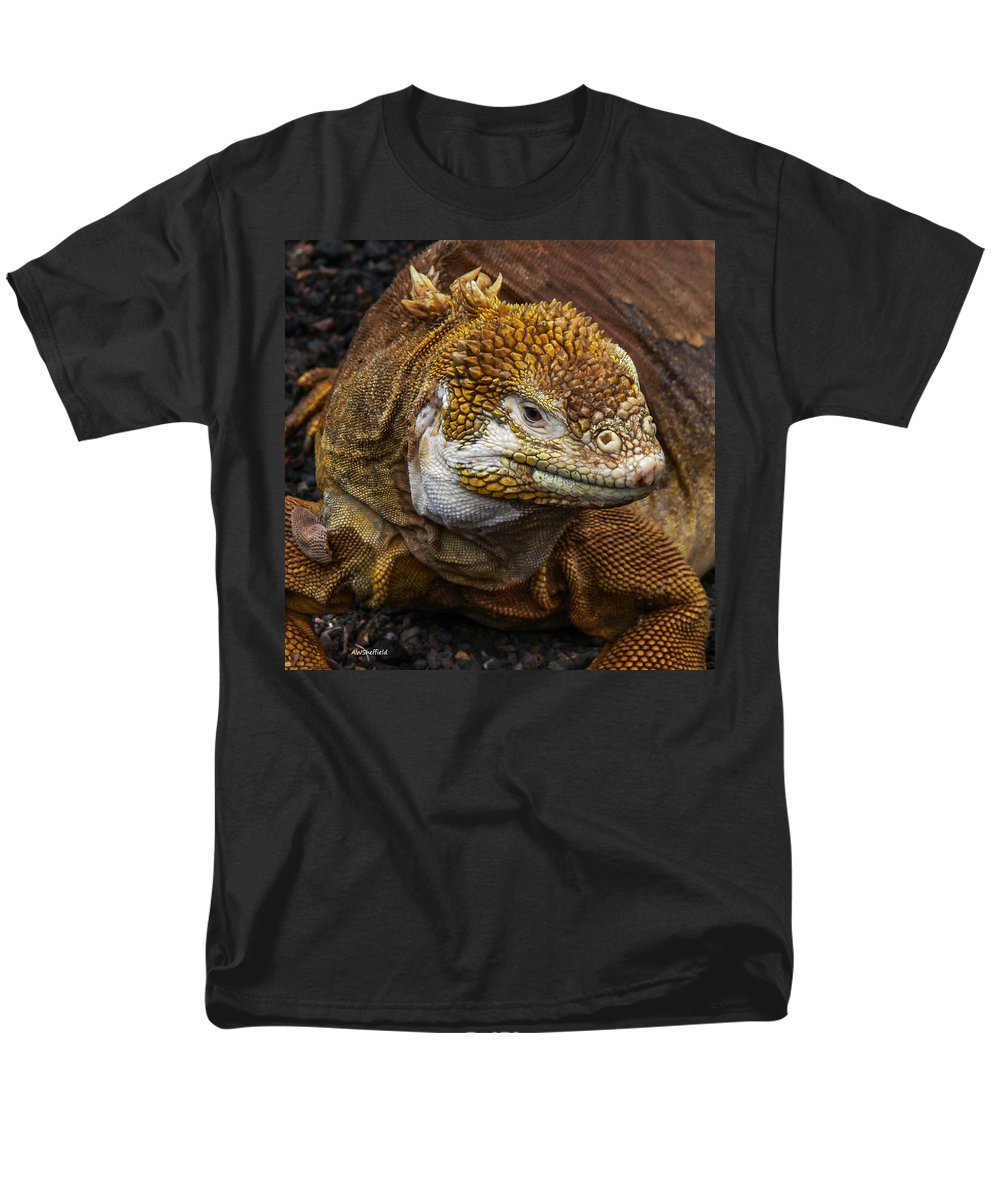Galapagos Men's T-Shirt (Regular Fit) featuring the photograph Galapagos Land Iguana by Allen Sheffield