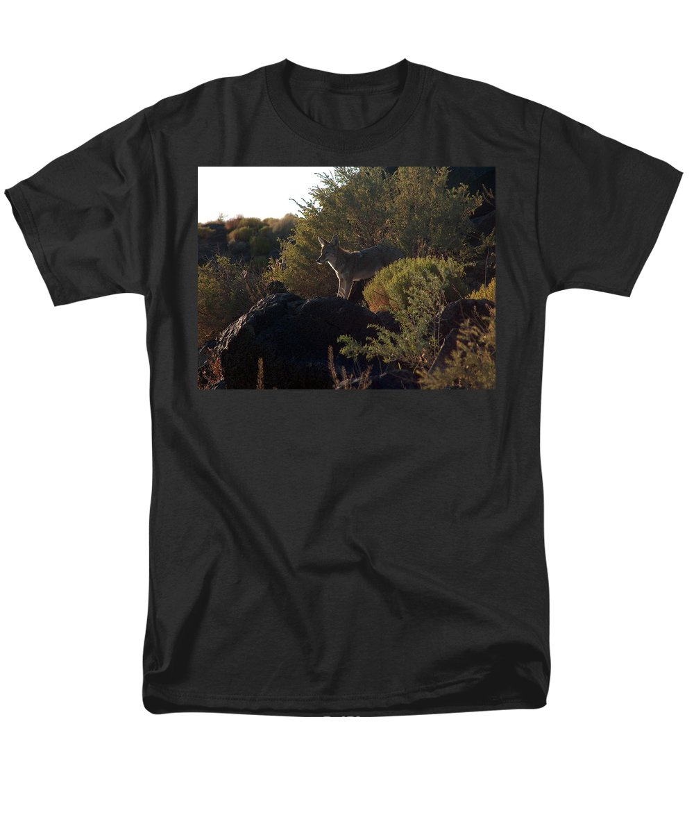 Coyote Men's T-Shirt (Regular Fit) featuring the photograph Coyote at the Petrogyphs 2 by Tim McCarthy