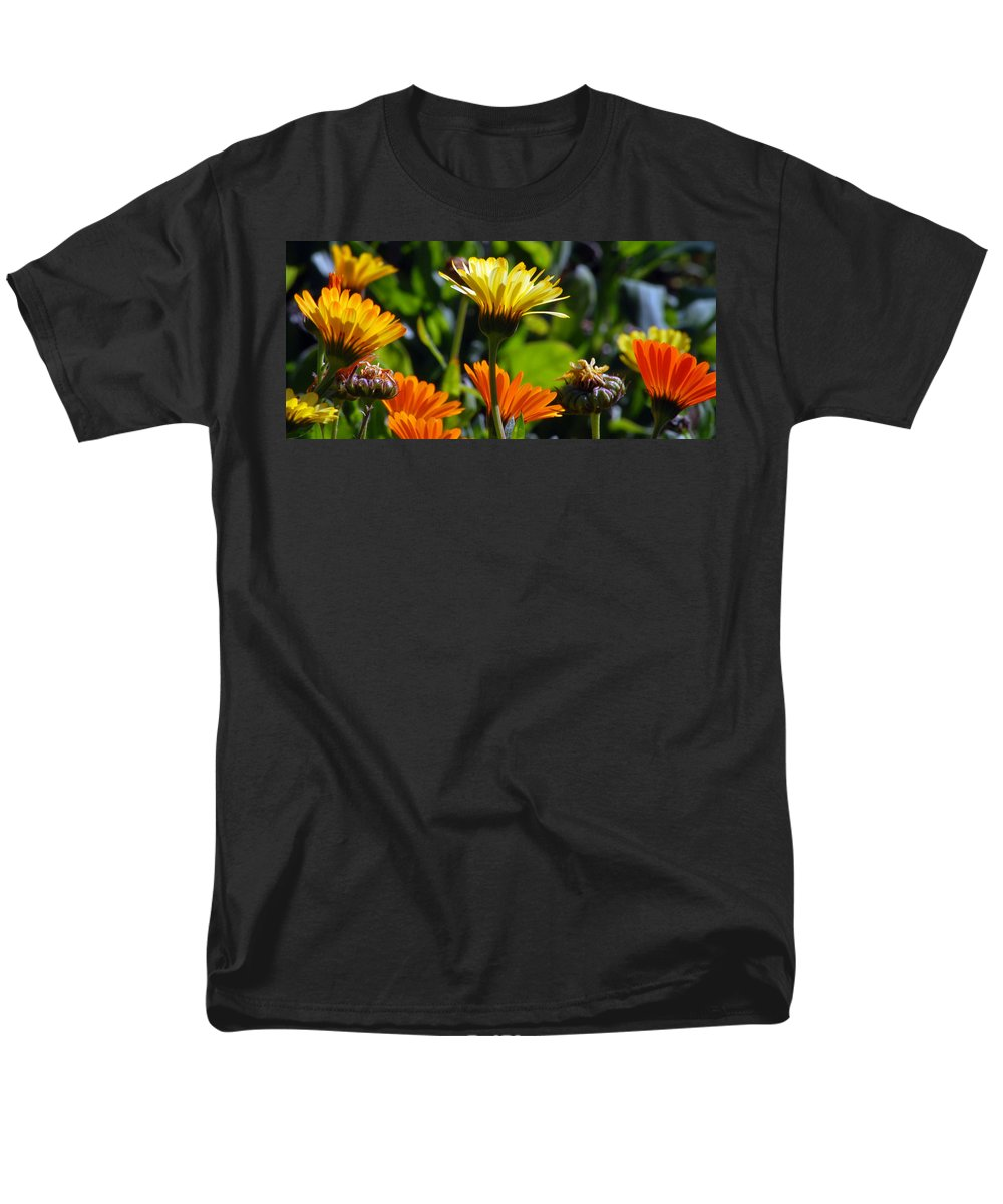 Dasy Men's T-Shirt (Regular Fit) featuring the photograph Daisies by Amy Fose