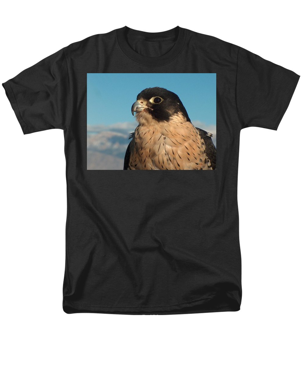 Peregrine Falcon Men's T-Shirt (Regular Fit) featuring the photograph Peregrine Falcon by Tim McCarthy