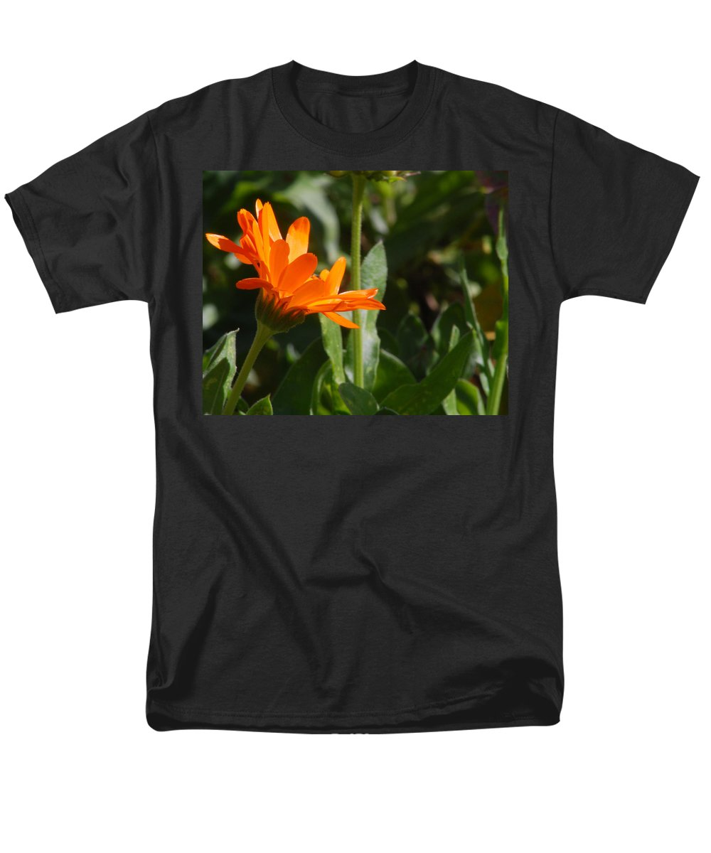 Orange Daisy Men's T-Shirt (Regular Fit) featuring the photograph Reach for the Sun 2 by Amy Fose
