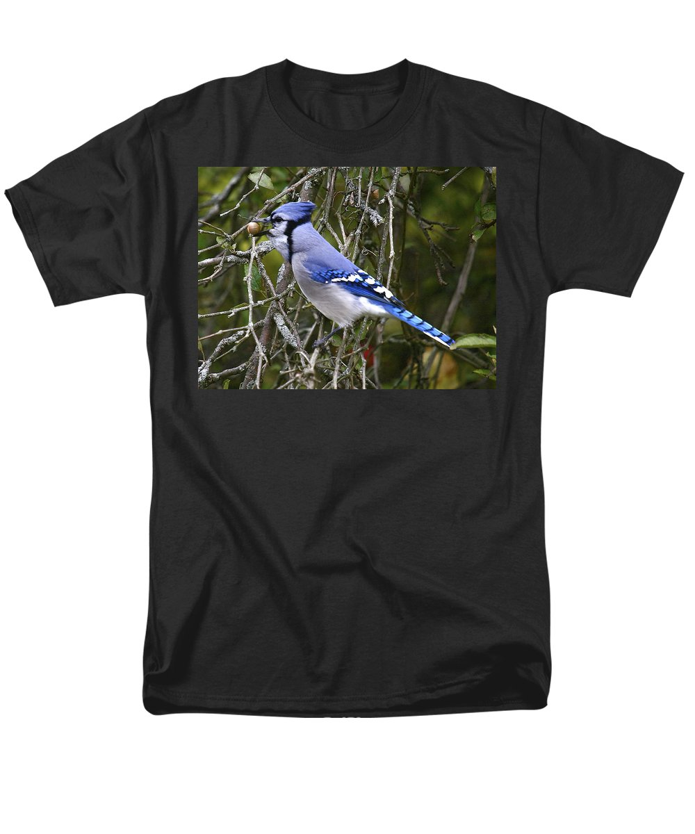 Bird Men's T-Shirt (Regular Fit) featuring the photograph The gathering by Robert Pearson