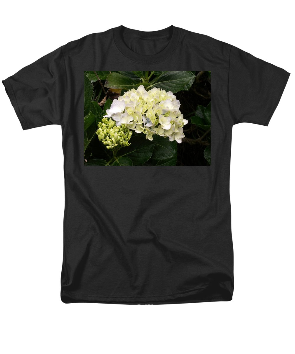 Flower Men's T-Shirt (Regular Fit) featuring the photograph White Hydrangeas by Amy Fose
