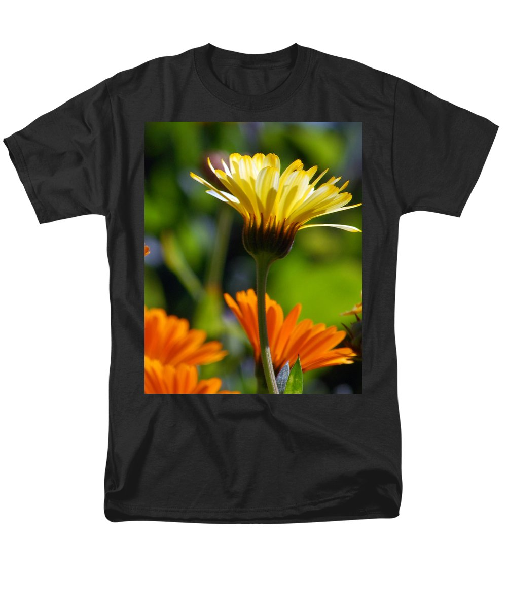 Daisy Men's T-Shirt (Regular Fit) featuring the photograph Yellow Daisy by Amy Fose