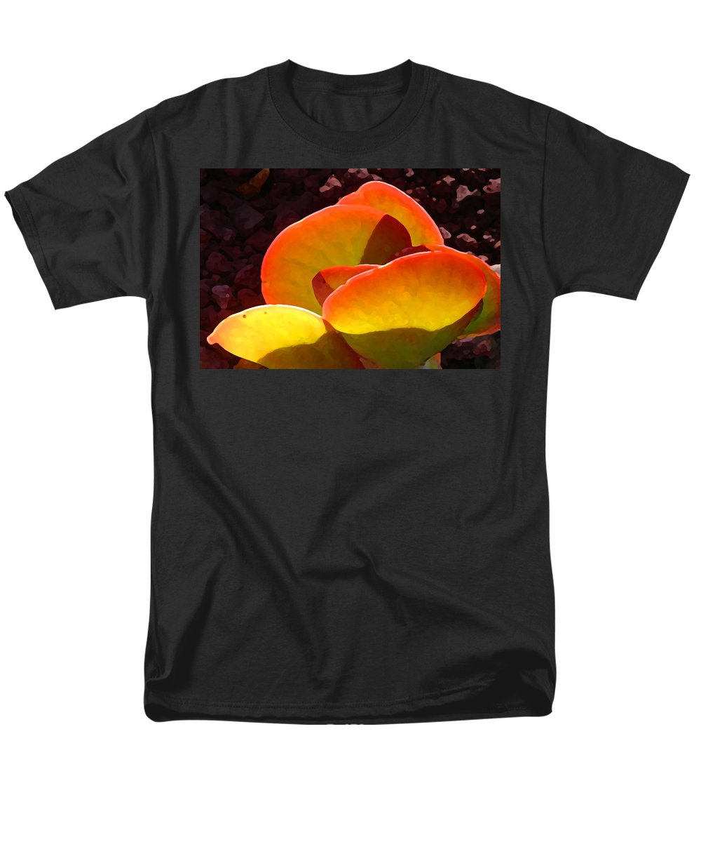 Succulent Men's T-Shirt (Regular Fit) featuring the painting Backlit Paddle Plant by Amy Vangsgard