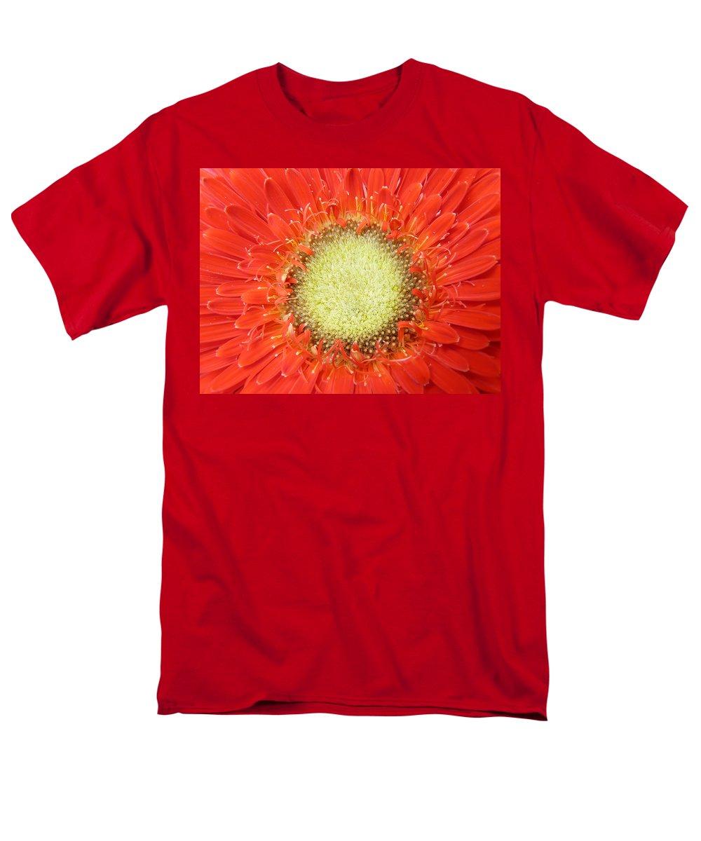 Gerbera Men's T-Shirt (Regular Fit) featuring the photograph Gerbera by Daniel Csoka