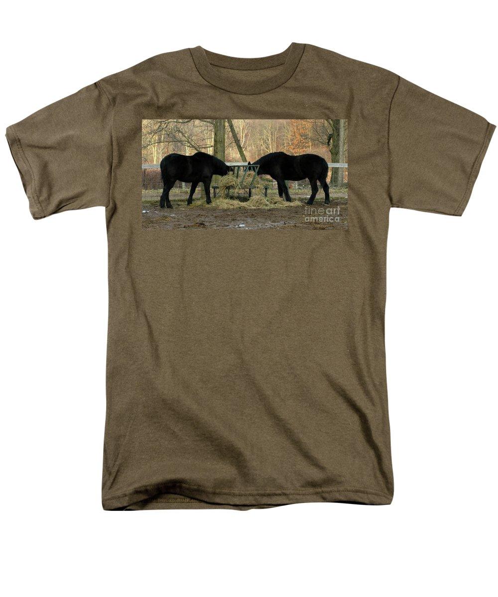 Horse Men's T-Shirt (Regular Fit) featuring the photograph Barnyard Beauties by Ann Horn
