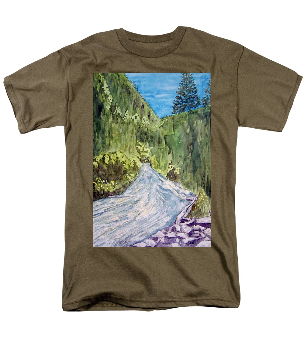 New Mexico Art Men's T-Shirt (Regular Fit) featuring the painting New Mexico Canyon Impression by Larry Wright