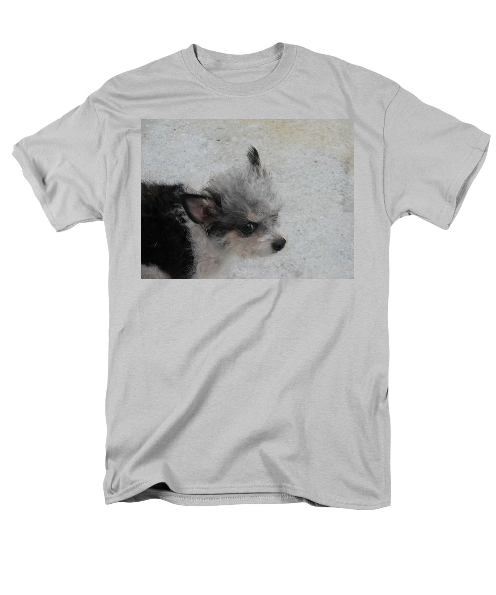 Puppy Men's T-Shirt (Regular Fit) featuring the photograph Airport Pup by Kelly Mezzapelle