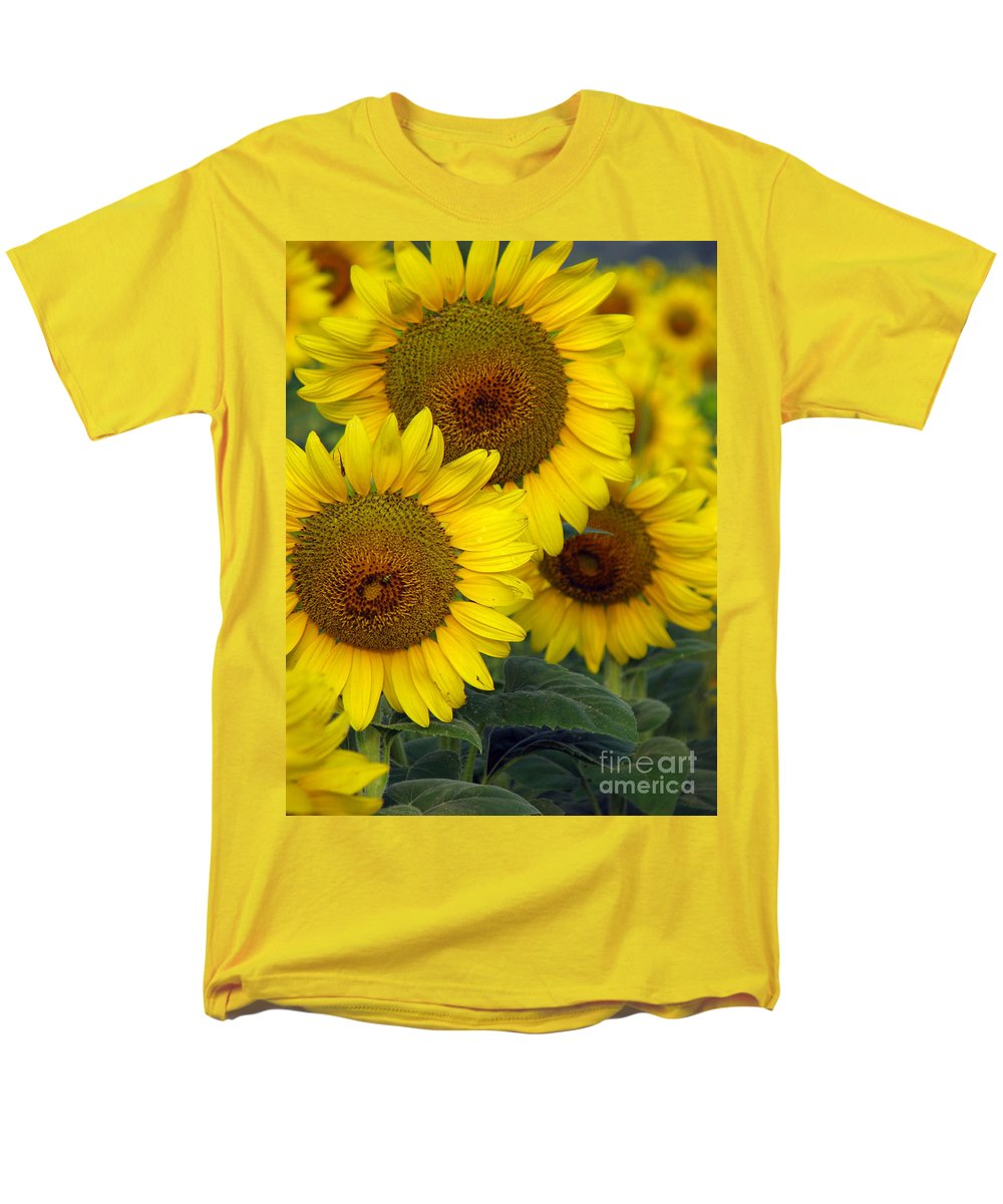 Sunflowers Men's T-Shirt (Regular Fit) featuring the photograph Sunflower series by Amanda Barcon
