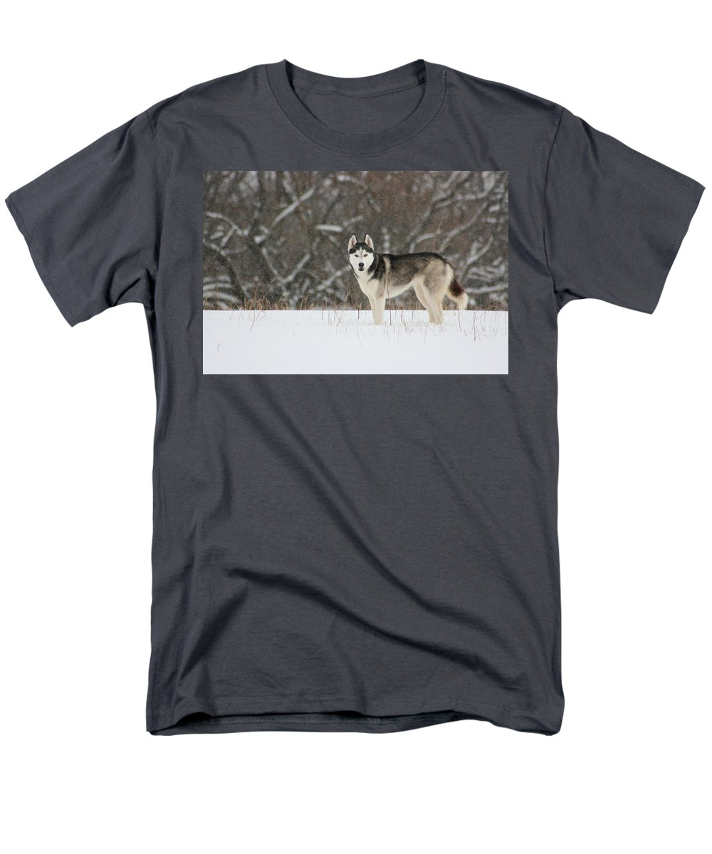 Landscape Men's T-Shirt (Regular Fit) featuring the photograph I've Been Spotted by David Dunham