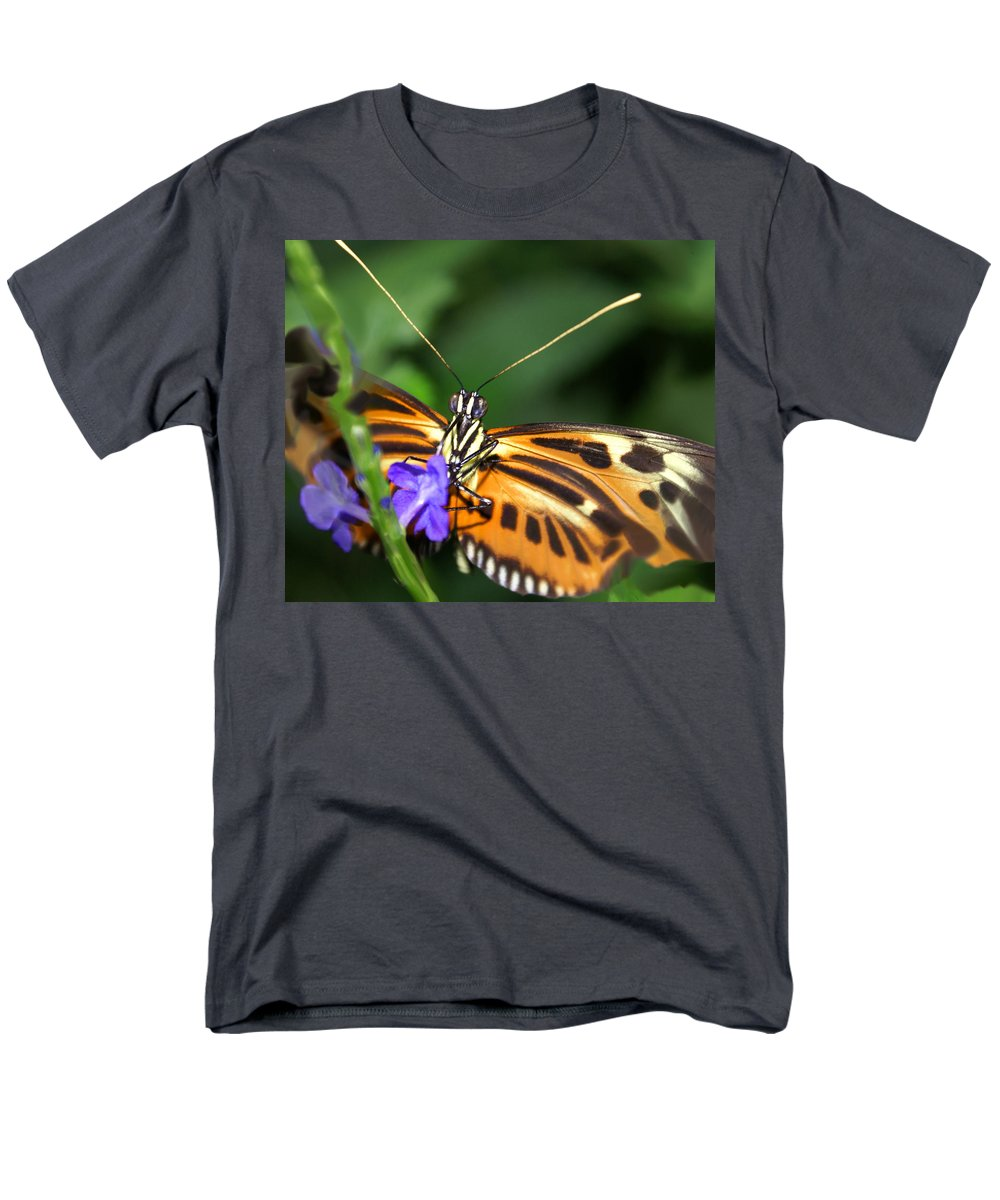 Butterfly Men's T-Shirt (Regular Fit) featuring the photograph Butterfly 2 eucides isabella by Heather Coen