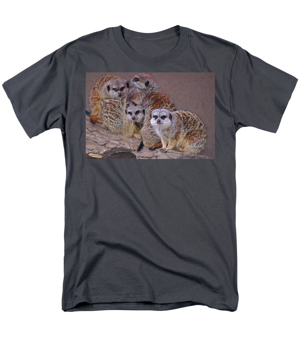 Mer Cats Men's T-Shirt (Regular Fit) featuring the photograph Freezing Meer Cats by Heather Coen