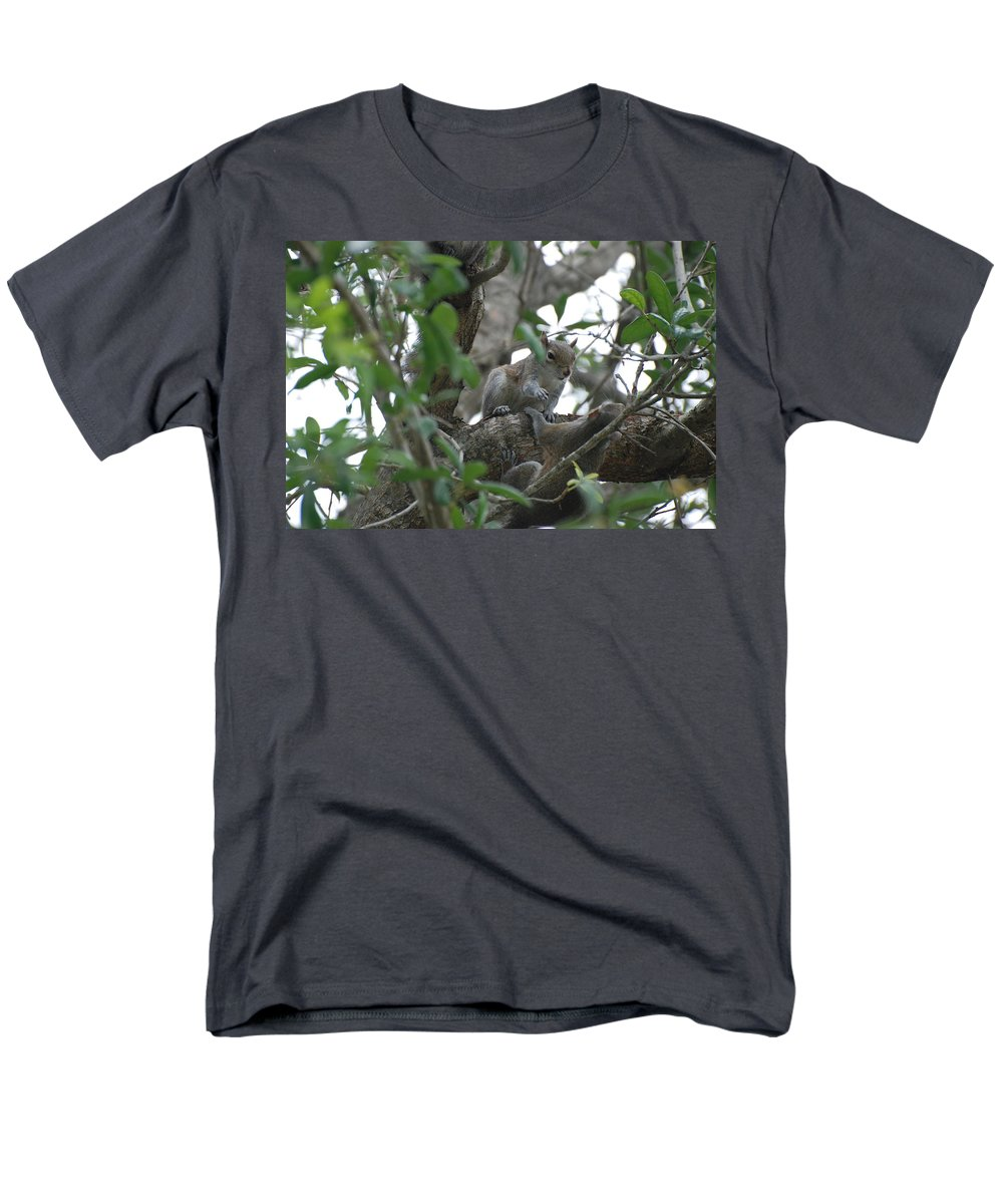 Squirrel Men's T-Shirt (Regular Fit) featuring the photograph Lending A Helping Hand by Rob Hans