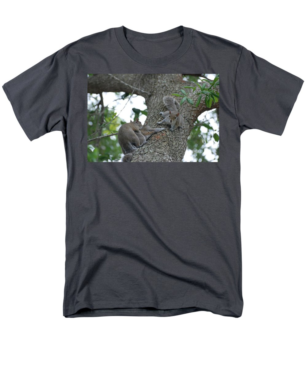 Squirrel Men's T-Shirt (Regular Fit) featuring the photograph Luck Be A Lady by Rob Hans