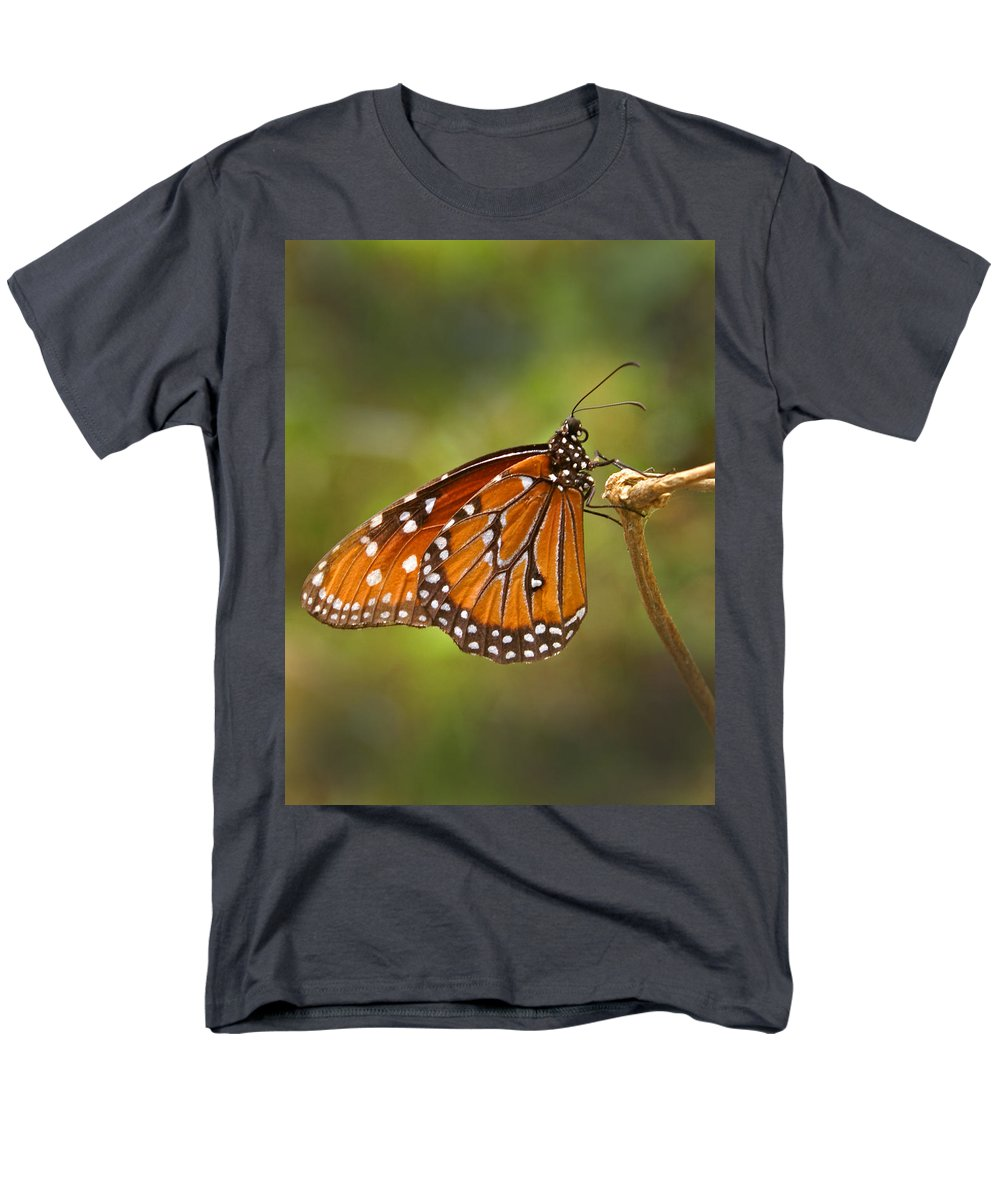 Monarch Men's T-Shirt (Regular Fit) featuring the photograph Monarch Butterfly by Heather Coen