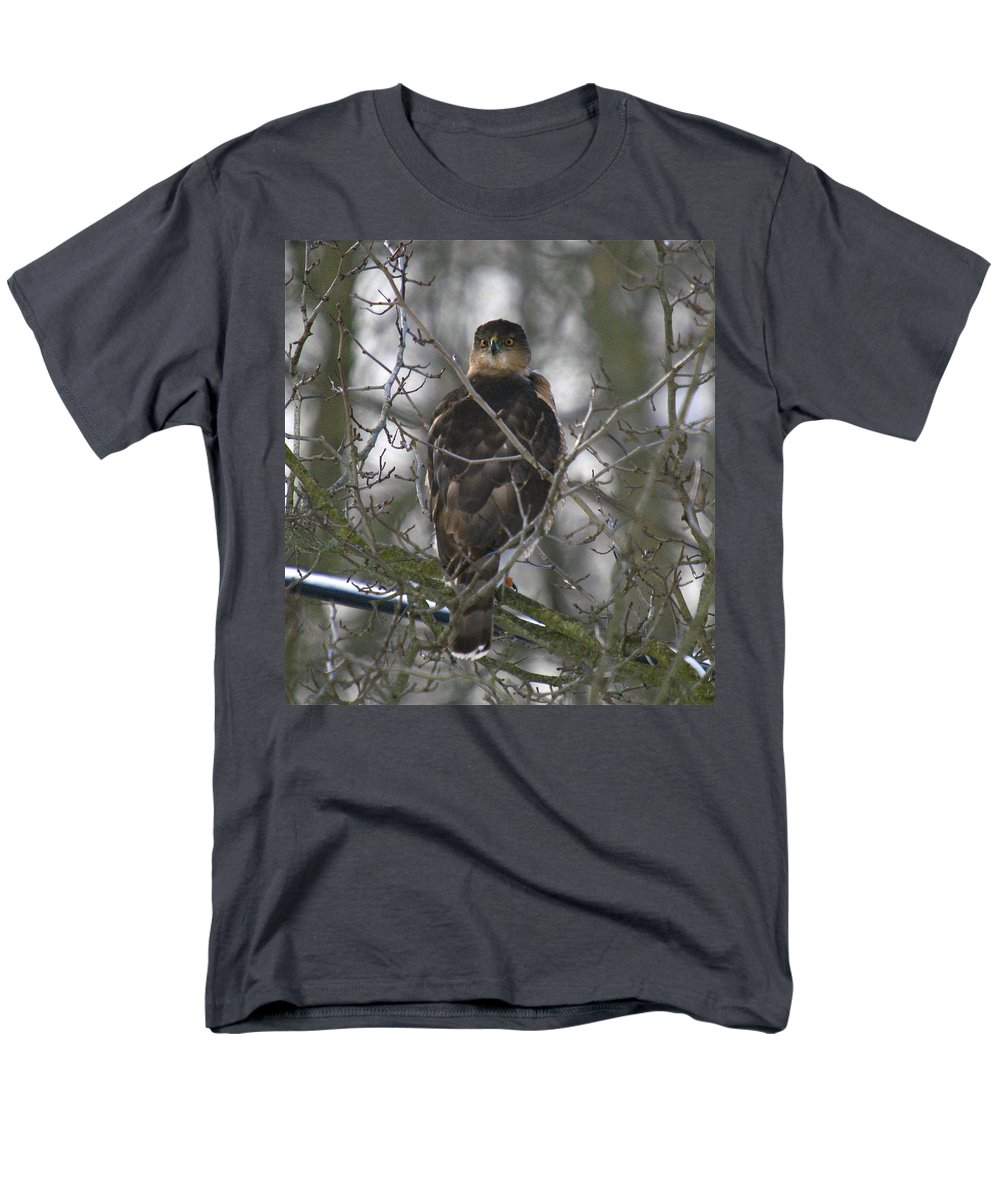 Bird Men's T-Shirt (Regular Fit) featuring the photograph The hawks have eyes by Robert Pearson