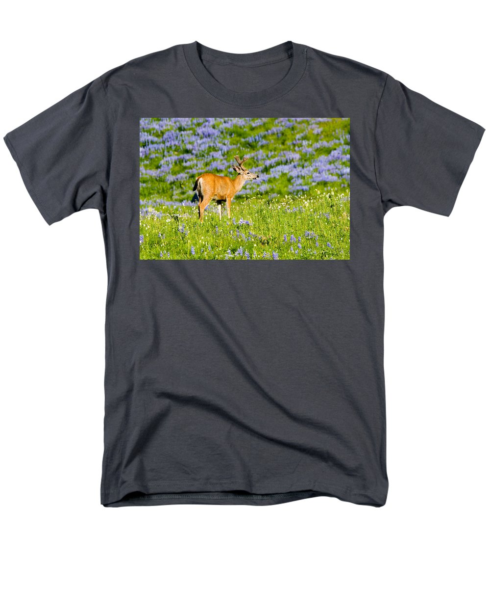 Deer Men's T-Shirt (Regular Fit) featuring the photograph Velvet on Lupine by Mike Dawson