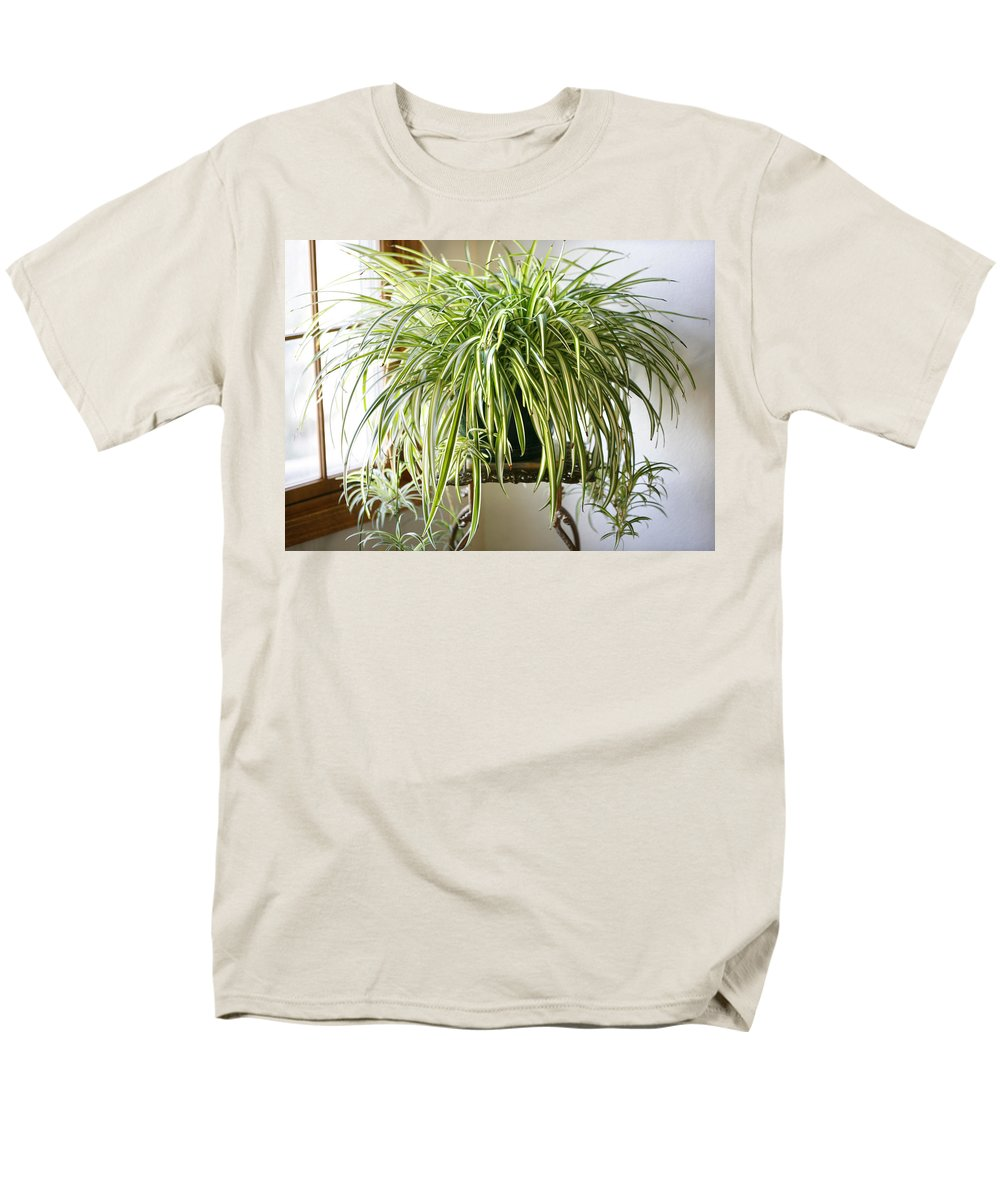 Spider Plant Men's T-Shirt (Regular Fit) featuring the photograph Spider Plant by Marilyn Hunt