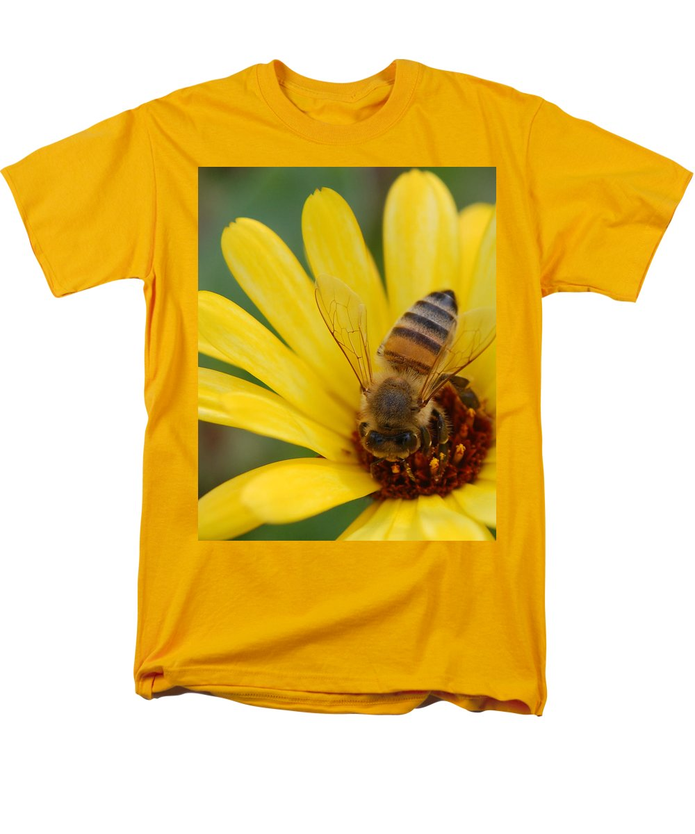 Bee Men's T-Shirt (Regular Fit) featuring the photograph Bee on flower by Amy Fose