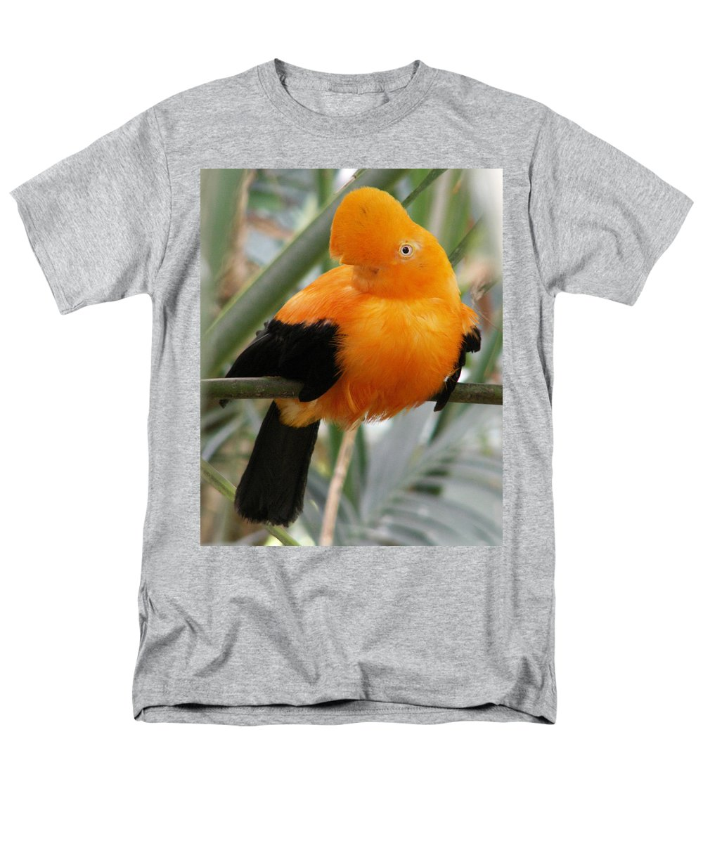 Bird Men's T-Shirt (Regular Fit) featuring the photograph Andean Cock of the Rock by Amy Fose