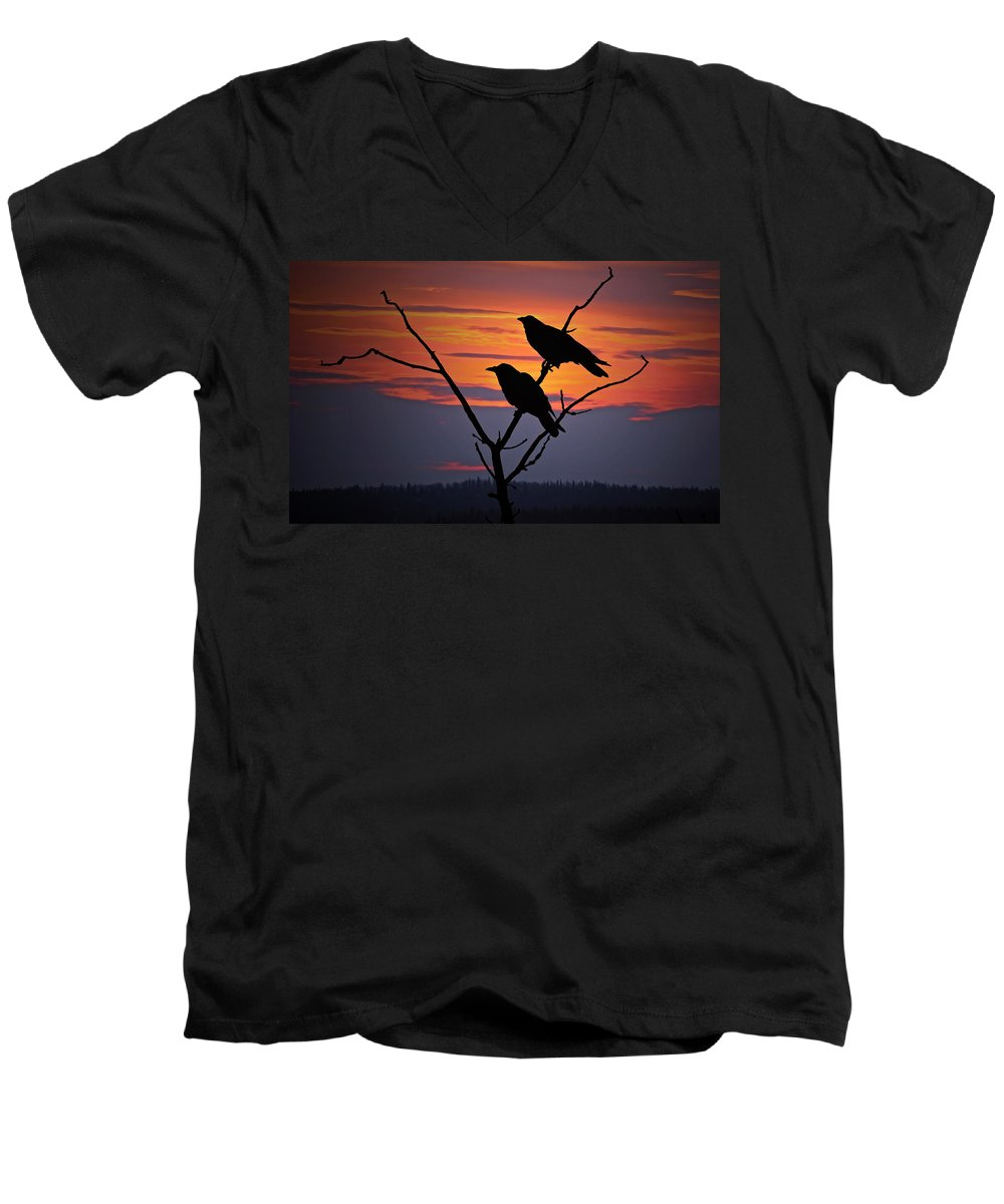 Raven Men's V-Neck T-Shirt featuring the photograph 2 Ravens by Ron Day