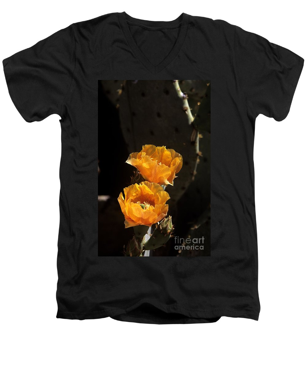 Cactus Men's V-Neck T-Shirt featuring the photograph Apricot Blossoms by Kathy McClure