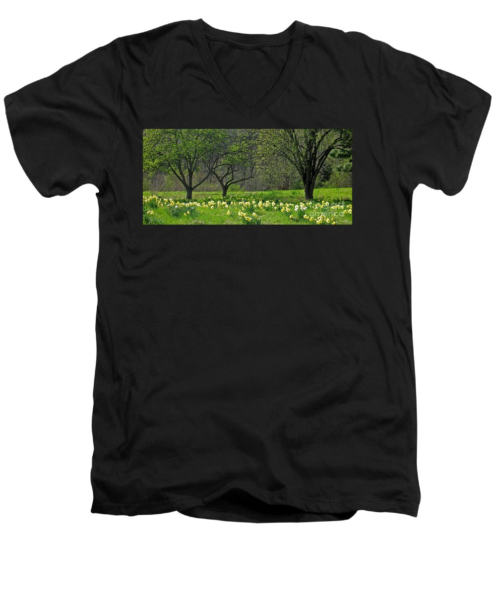 Spring Men's V-Neck T-Shirt featuring the photograph Daffodil Meadow by Ann Horn