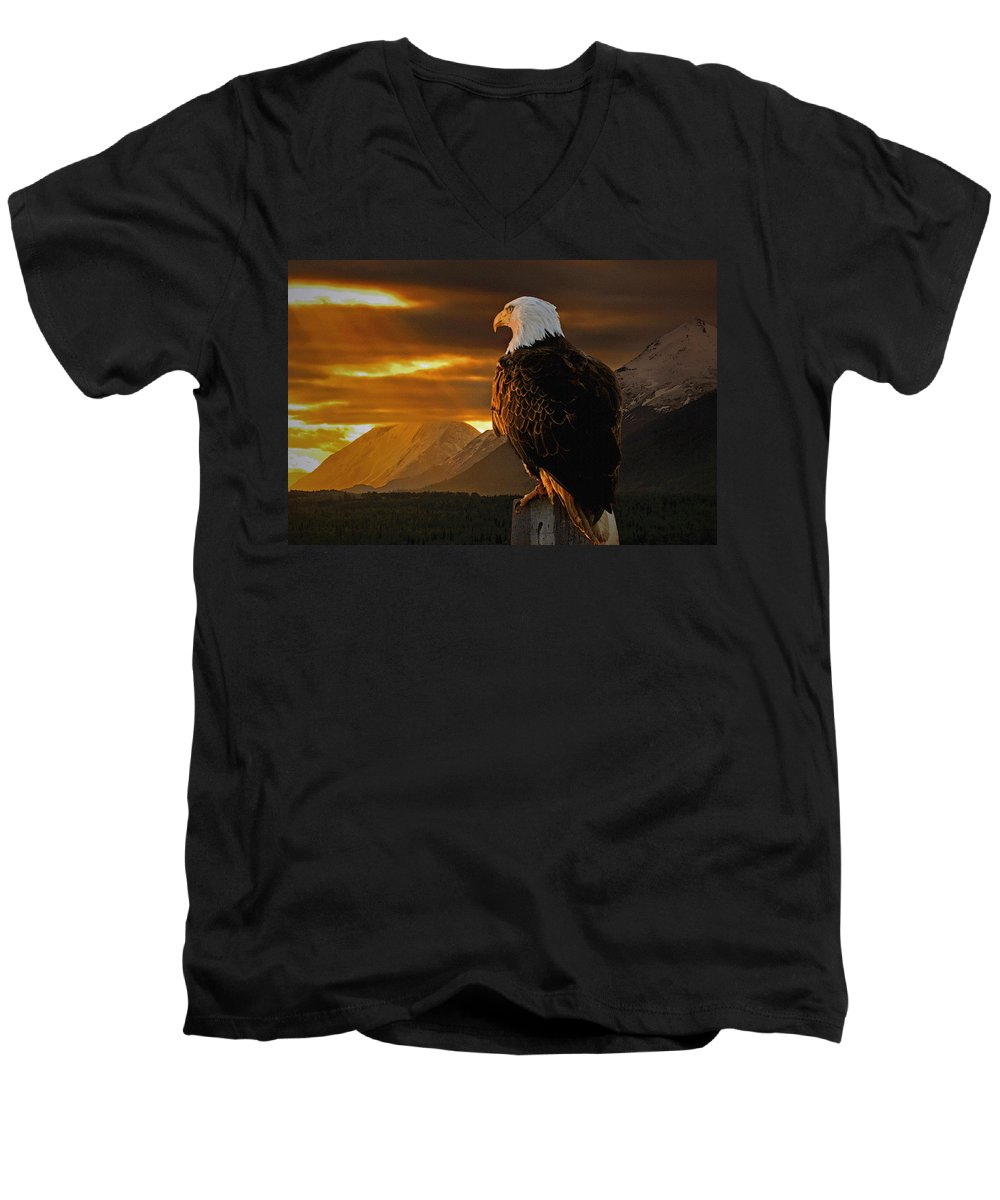 Eagle Men's V-Neck T-Shirt featuring the photograph Domain by Ron Day