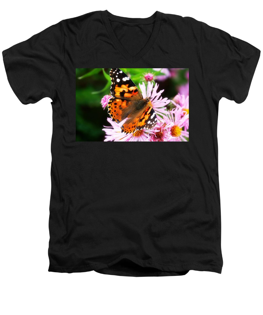 Flower Men's V-Neck T-Shirt featuring the photograph Late Summer Painted Lady by Marilyn Hunt