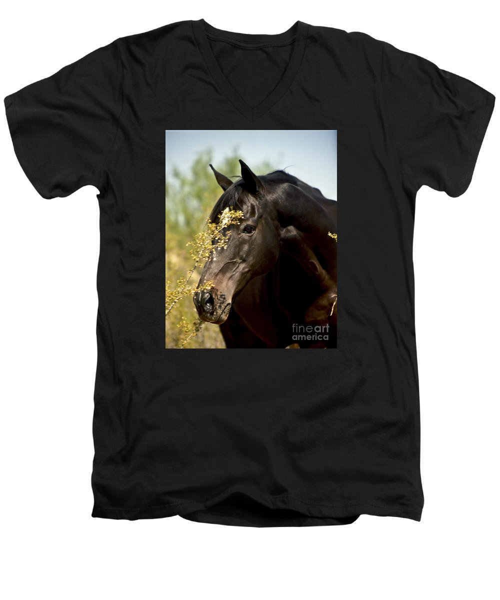 Horse Men's V-Neck T-Shirt featuring the photograph Portrait Of A Thoroughbred by Kathy McClure