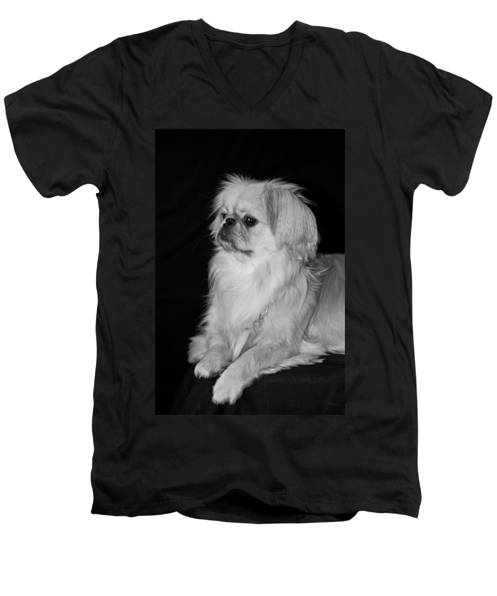 Animal Men's V-Neck T-Shirt featuring the photograph The Princess by Kristi Swift