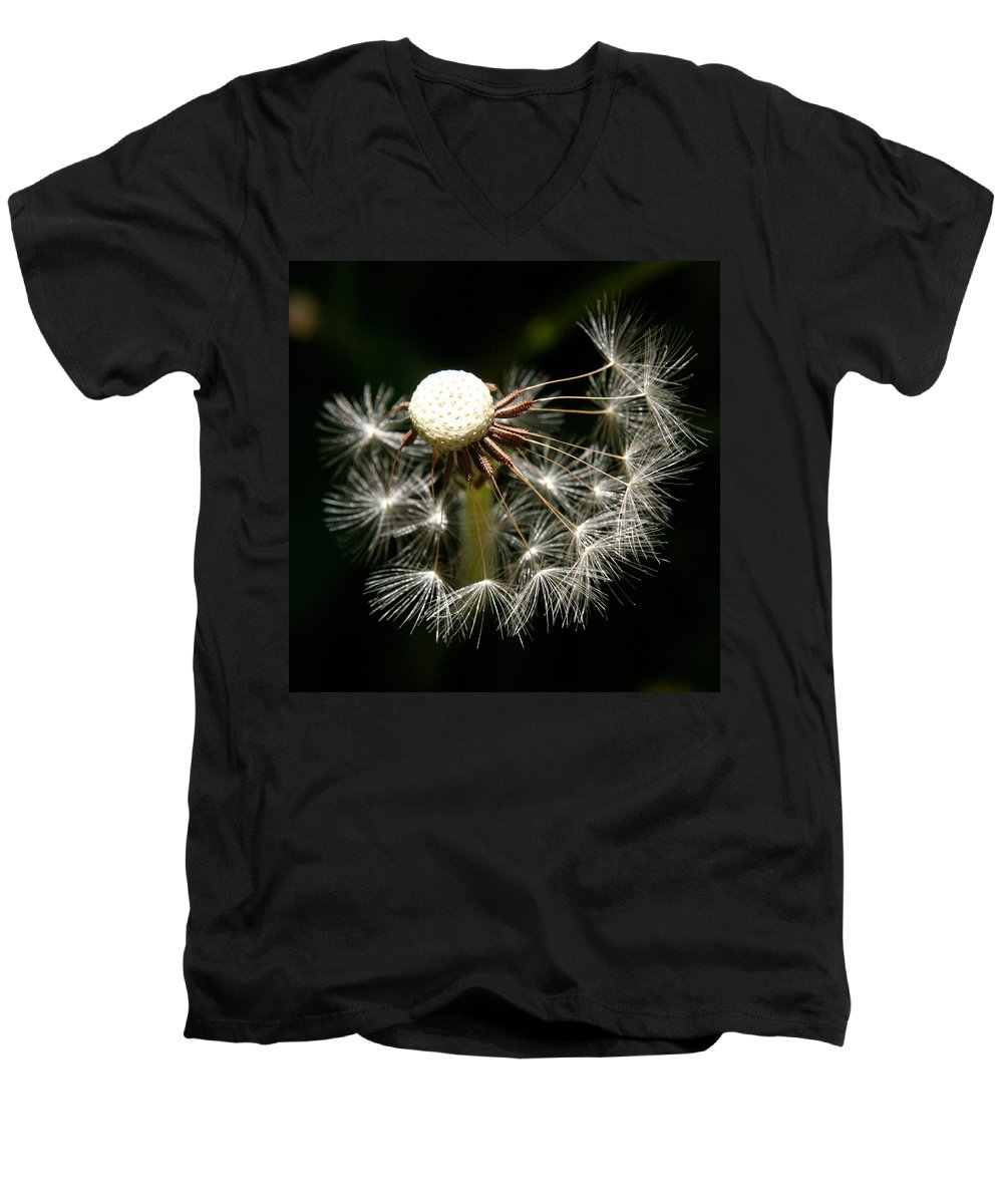 Dandelion Men's V-Neck T-Shirt featuring the photograph Dandelion by Ralph A Ledergerber-Photography