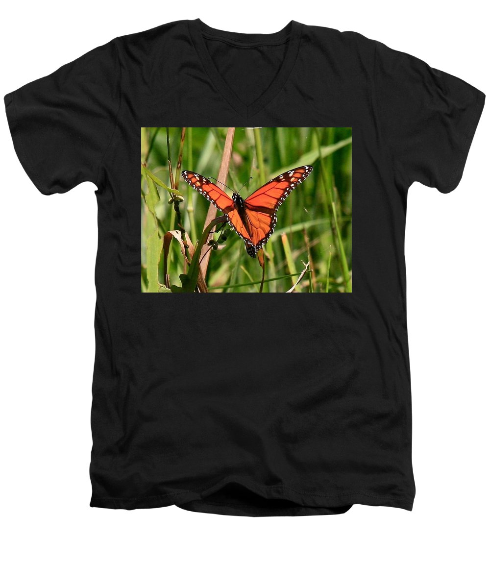 Butterfly Men's V-Neck T-Shirt featuring the photograph Drying My Wings by Robert Pearson