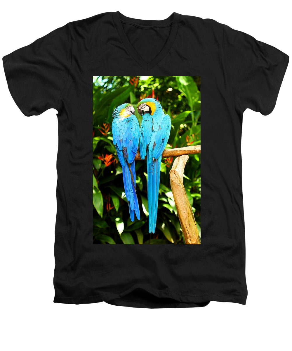 Bird Men's V-Neck T-Shirt featuring the photograph A Pair Of Parrots by Marilyn Hunt