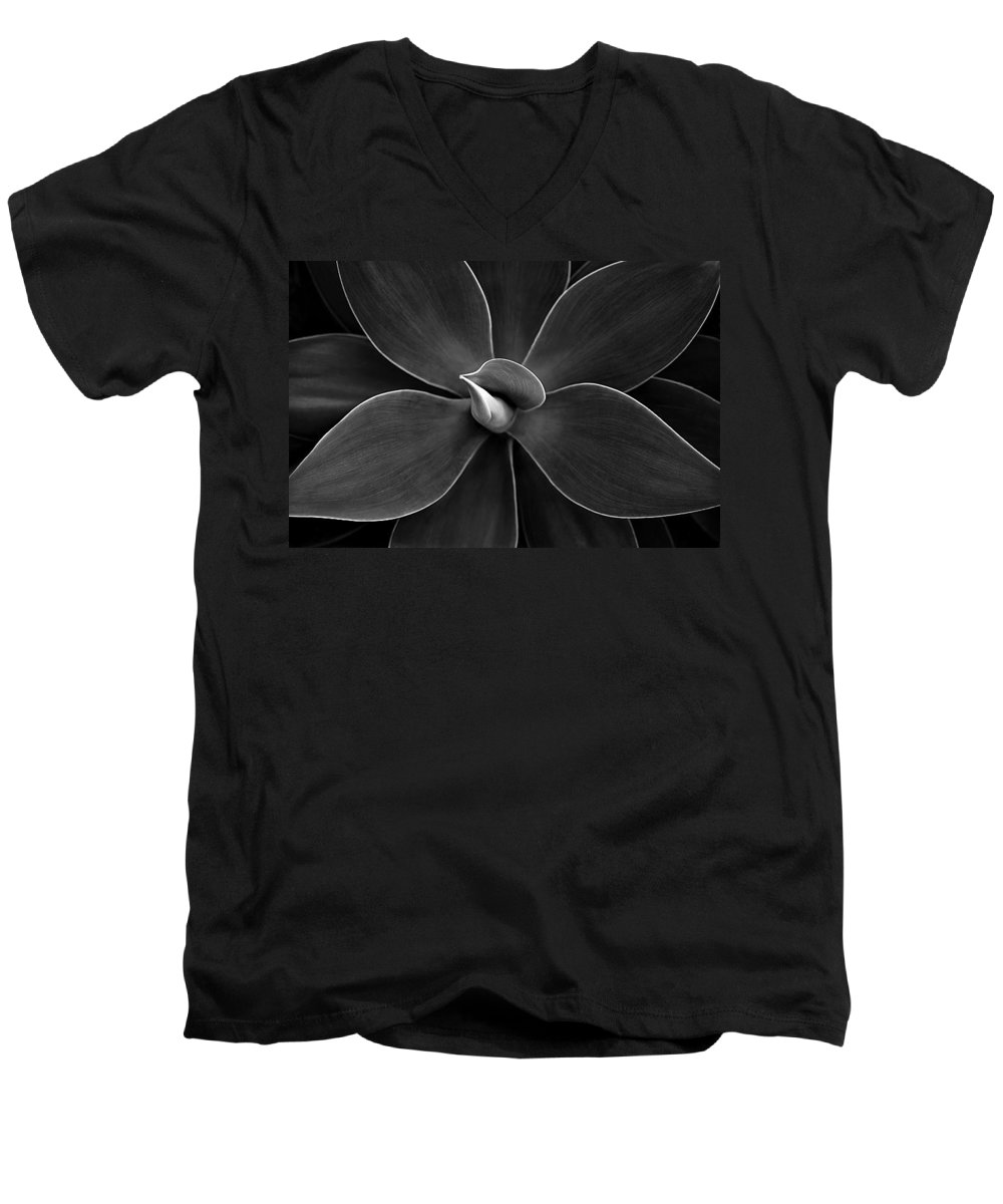 Agave Men's V-Neck T-Shirt featuring the photograph Agave Leaves Detail by Marilyn Hunt