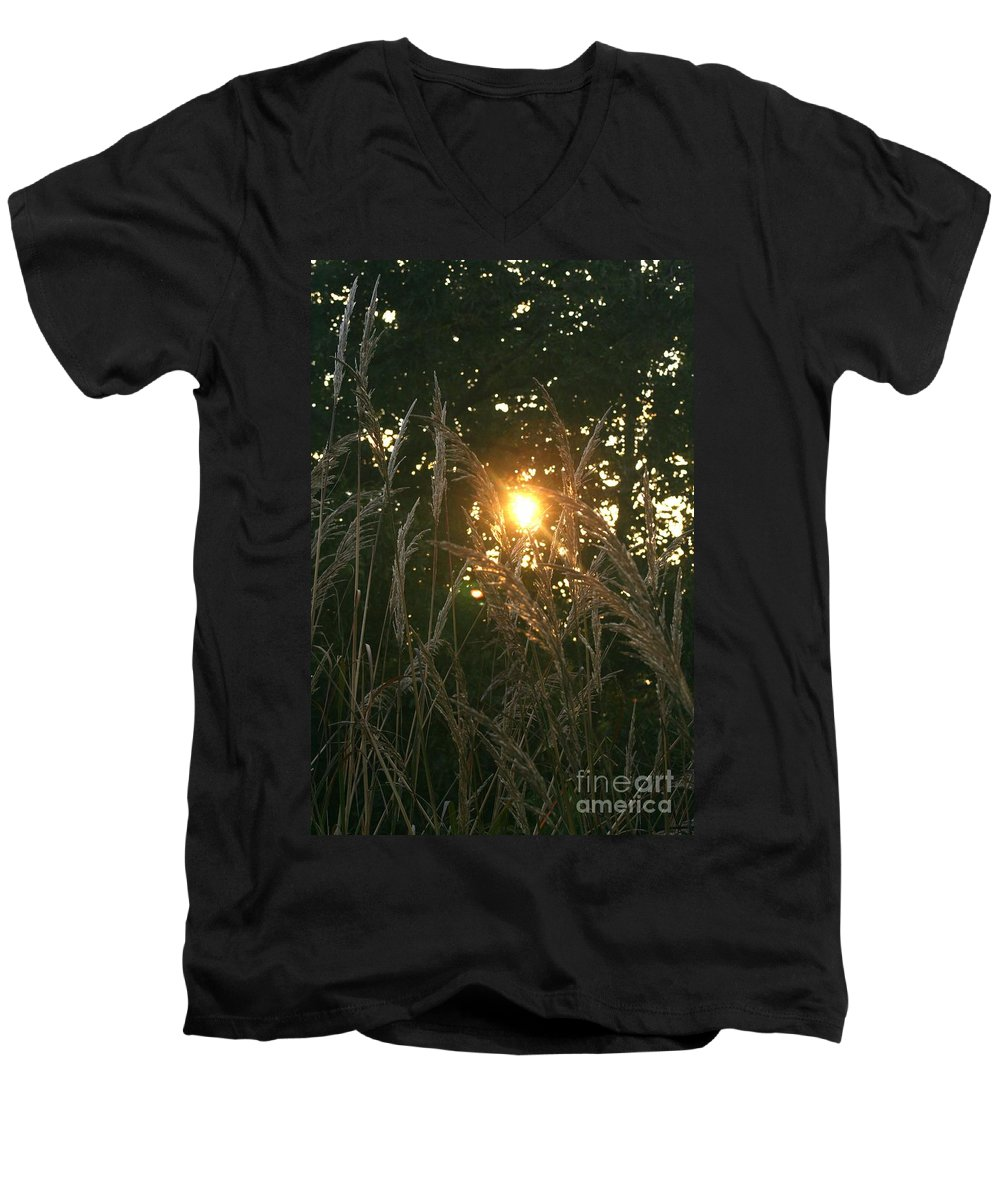 Light Men's V-Neck T-Shirt featuring the photograph Autumn Grasses In The Morning by Nadine Rippelmeyer