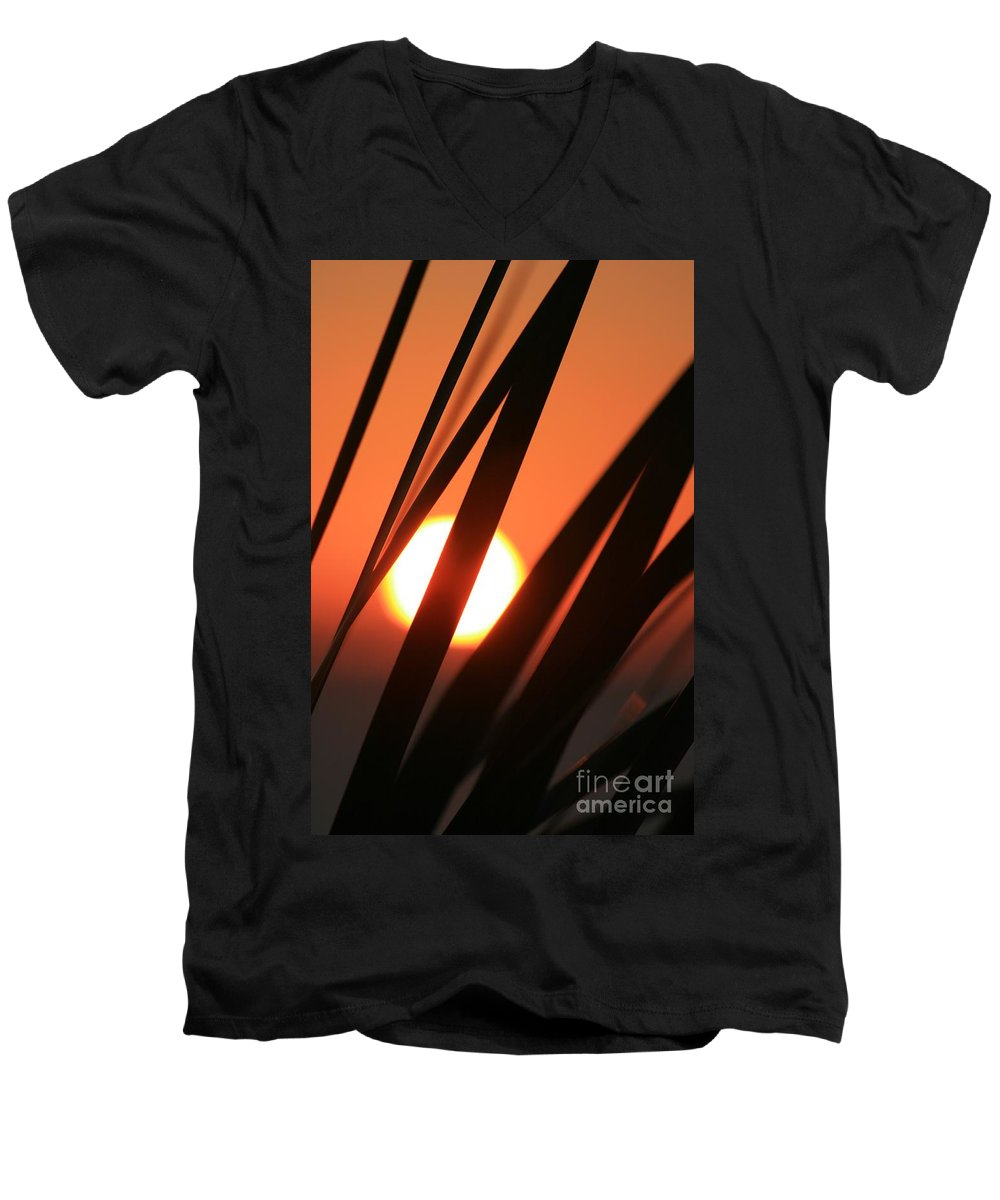 Sun Men's V-Neck T-Shirt featuring the photograph Blazing Sunset And Grasses by Nadine Rippelmeyer