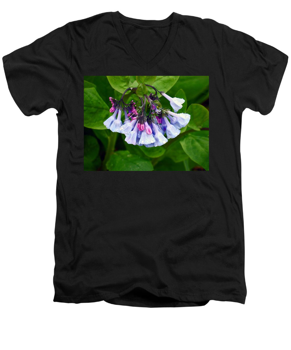 Native Landscape Men's V-Neck T-Shirt featuring the photograph Blue Bells by Steve Karol