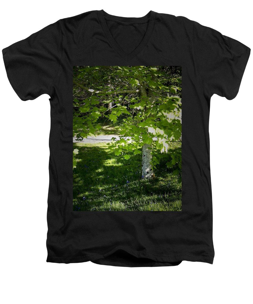Irish Men's V-Neck T-Shirt featuring the photograph Bluebells In Killarney National Park Ireland by Teresa Mucha