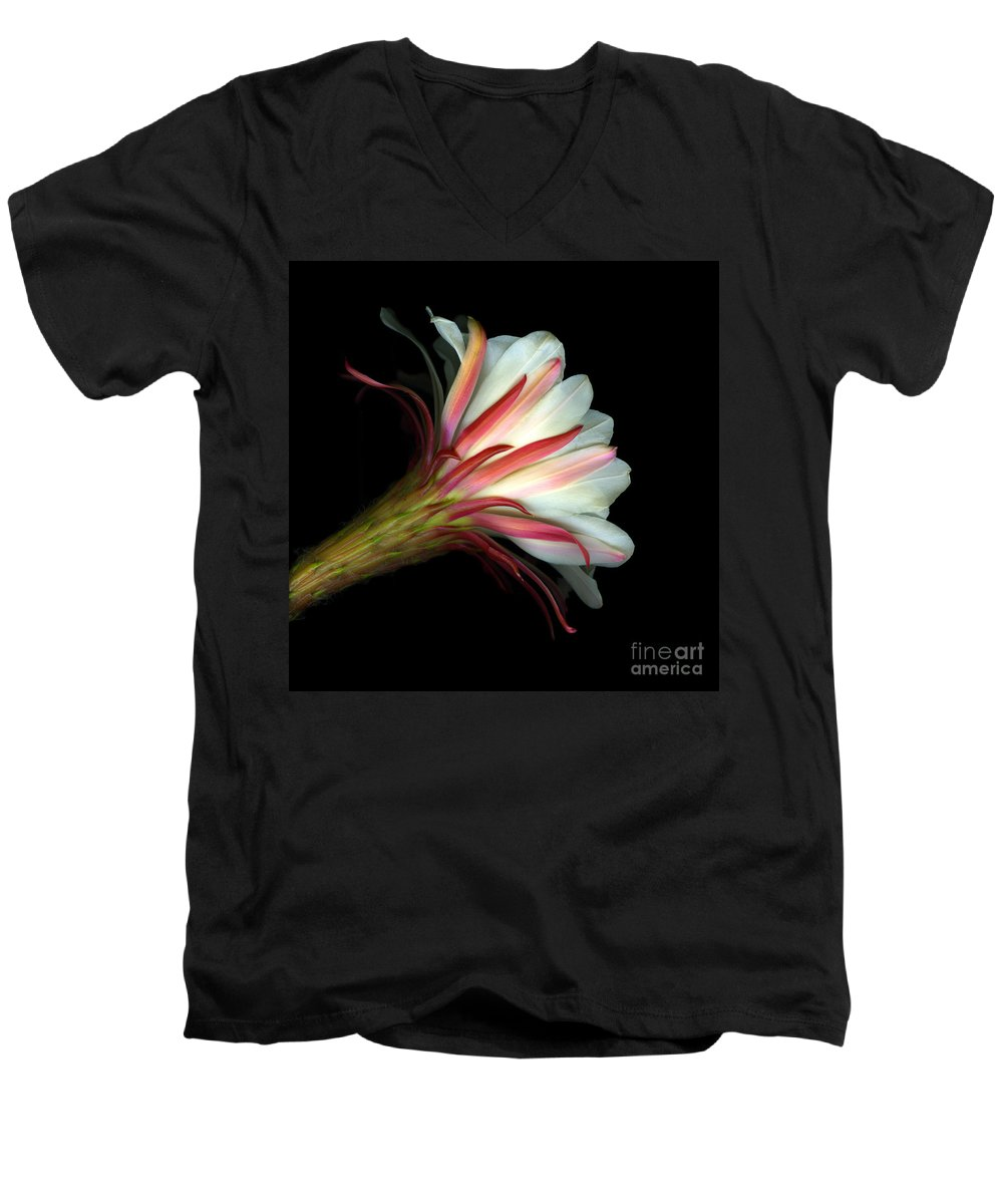 Scanart Men's V-Neck T-Shirt featuring the photograph Cactus Flower by Christian Slanec